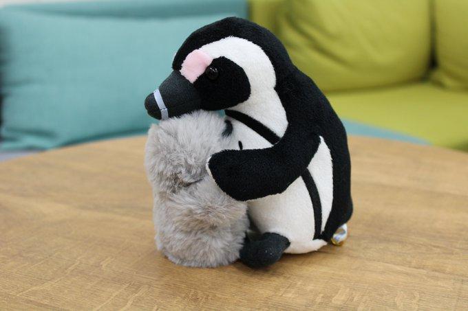 ハグして!ペンギン親子ぬいぐるみ(アクアポケット商品)