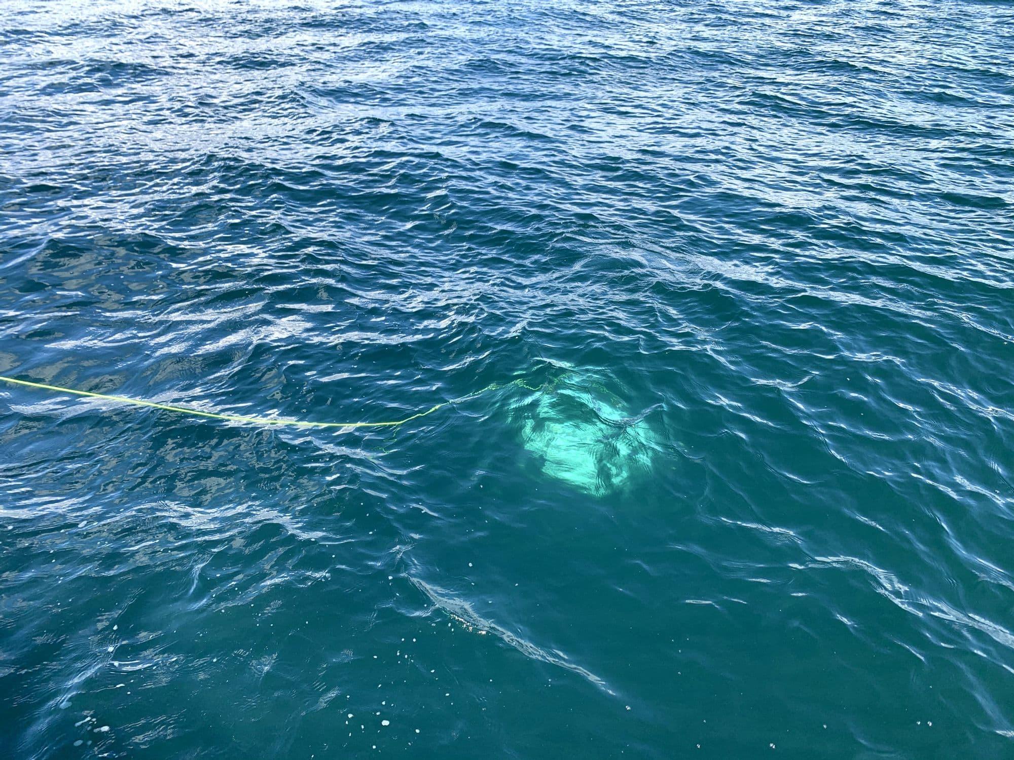 海に潜っていく水中ドローン